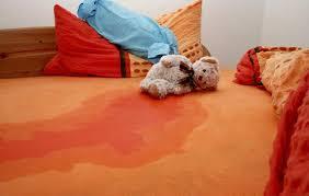 Cần áp dụng cách khử mùi khai nước tiểu trong phòng nhanh chóng