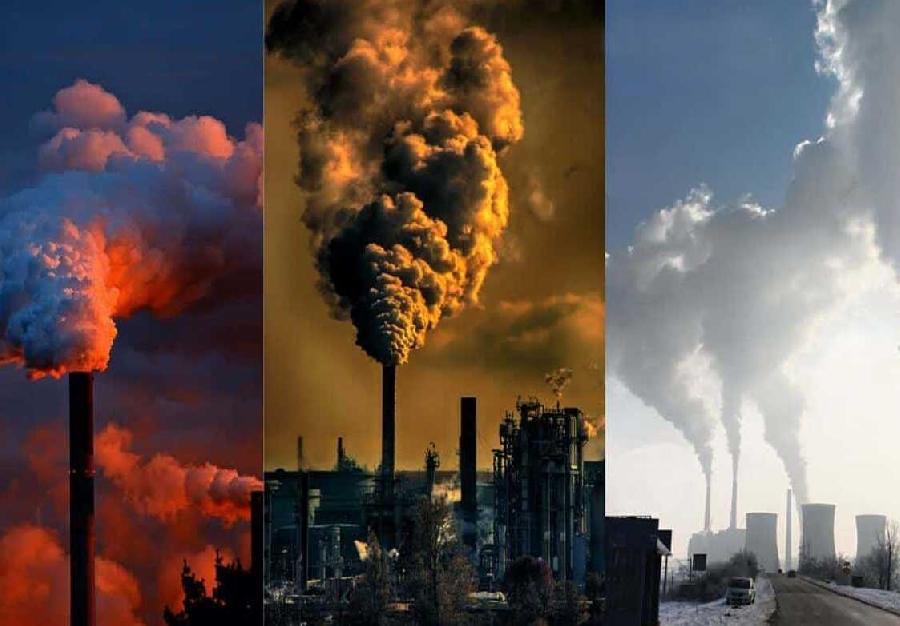 Da chính là nơi hấp thụ rất nhiều hóa chất ô nhiễm
