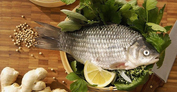 Khử mùi tanh từ cá mọi người có thể tham khảo