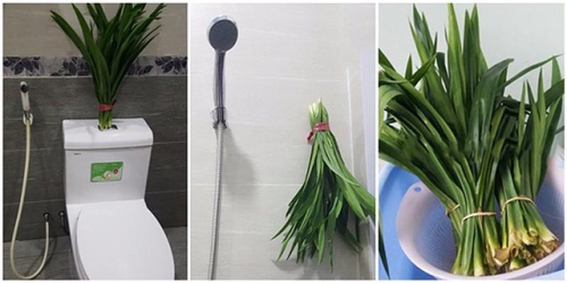 Mẹo vô cùng đơn giản khử mùi hôi nhà tắm