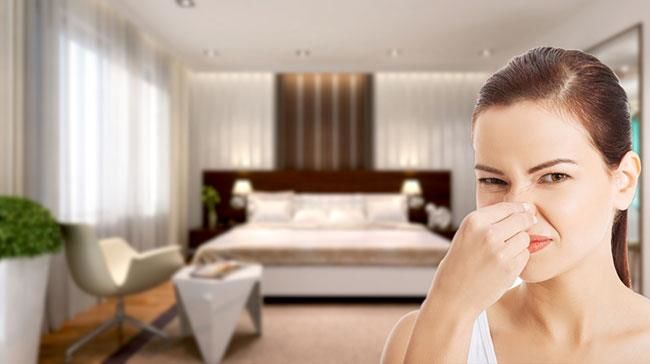 Nhà hoặc văn phòng bị ám bởi một mùi hôi không thể chịu được?