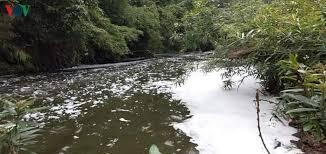 Ô nhiễm môi trường từ túi nilon luôn là vấn đề rắc rối