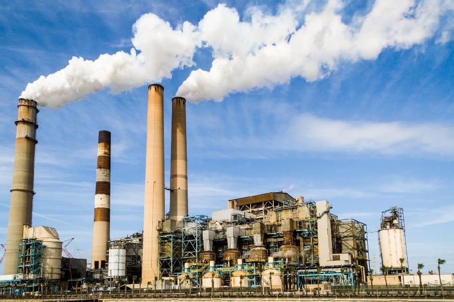 Sự ô nhiễm không khí làm tổn hại đến mùi hương của hoa