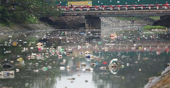 Tình trạng ô nhiễm nguồn nước, môi trường sống